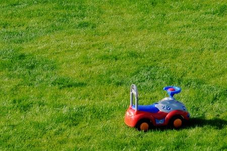 fotografia korporacyjna: samochodzik na zielonej trawie